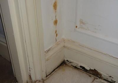 Cropped-mold-corner